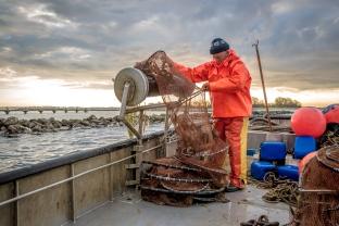 30 april 2015 De-Etage Kreeften vissen-9802.jpg