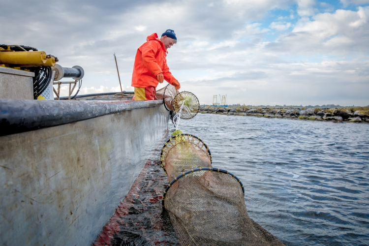 30 april 2015 De-Etage Kreeften vissen-0010